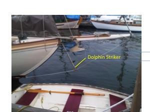 DolphinStriker